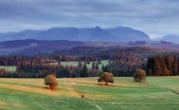 Landscape in Pieniny, Slovakia Royalty Free Stock Photo