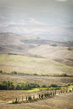 Landscape Pienza Royalty Free Stock Photos