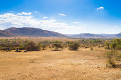 Landscape from Pilanesberg National Park, South Africa. Wildlife and nature. African safari stock photo