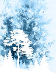 Landscape, Pine and Fir Trees. Image for Celebratory Christmas Design, Winter Forest Landscape with Pine and Fir Trees, Silhouettes on Hand-Draw Watercolor Stock Images