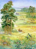 Landscape with pine trees. Watercolor stock illustration