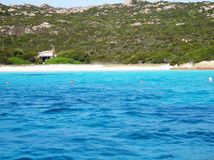 Landscape  pink beach sardinia Royalty Free Stock Images