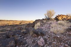 Landscape of a pink quartz, shrub and grass in dry desert. Landscape of a pink quartz, shrub and grass in the dry desert Stock Image