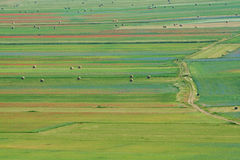 Landscape of the plain of Castelluccio, in Italy Stock Photography