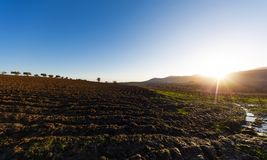Landscape at the plain of Thebes, Greece. Landscape at the plain of Thebes at Boeotia, central Greece Stock Photo