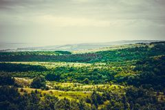 Landscape plateau. Forest in the valley royalty free stock images