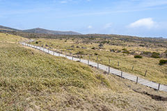 Landscape of plateau in Hallasan moutain Stock Image