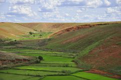 Landscape of the plateau of madagascar Royalty Free Stock Photography