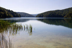 A landscape in the Plitvice Lakes National Park in Croatia Royalty Free Stock Photos