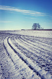 Landscape with plowed agricultural field in winter Stock Images