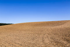 Landscape with plowed field Stock Images