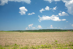 Landscape with plowed field, sky with clouds, and forest Royalty Free Stock Photography