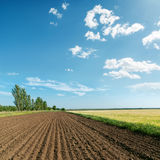 Landscape with plowed field. Under light clouds Stock Photography