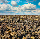 Landscape with a plowed field Stock Image