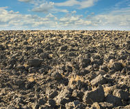 Landscape with a plowed field Stock Photography
