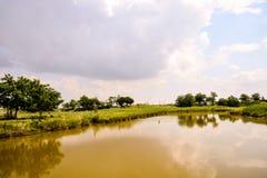 Landscape The Po Delta. Photo pictureLandscape of The Po Delta River in Italy Royalty Free Stock Photo