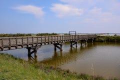 Landscape The Po Delta. Photo pictureLandscape of The Po Delta River in Italy Stock Photo
