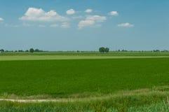 Landscape of Po river estuary surrounding areas, Scardovari Inle Royalty Free Stock Images