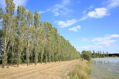 Landscape in Poitou-Charentes, France Stock Photo