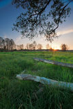 Landscape in Poland. Blue sky and green landscape in the poland Stock Image