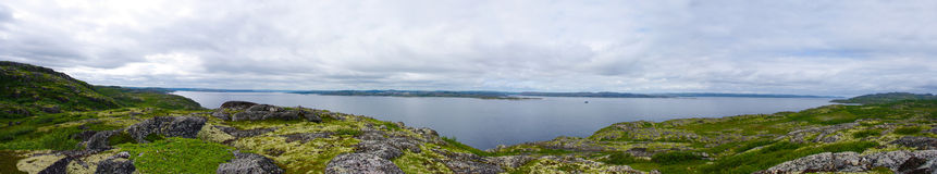 Landscape of the polar summer tundra. Murmansk region Stock Photography