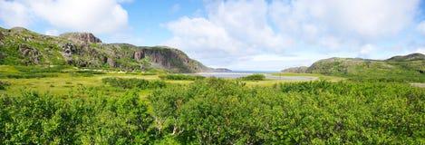 Landscape of the polar summer tundra. Murmansk region Stock Photos