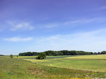 Landscape - Polish country. Landscape with green fields, trees and blue sky. Polish country Royalty Free Stock Photo