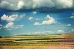 The landscape of polish flat lands countryside.  stock photo