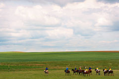 Landscape with Polo players in Alberta, Canada. Nature Landscape with group of recreational Polo players as seen in Southern Alberta, Canada royalty free stock images