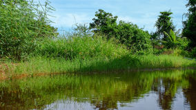 Landscape of pond in countryside royalty free stock images