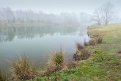 Landscape, pond and fog Stock Images