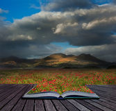 Landscape of poppy fields in front of mountain range  Stock Photography