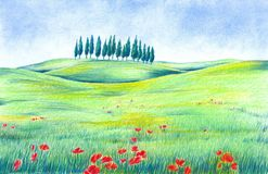 Landscape with Poppy Flowers Royalty Free Stock Images