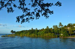 Landscape of Port Douglas Queensland  Australia Stock Image