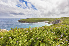 Landscape at Porte d'enfer, Guadeloupe Royalty Free Stock Photography