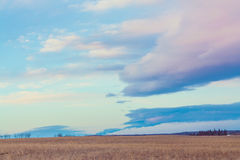 Landscape of the Prairie at Dusk Royalty Free Stock Images