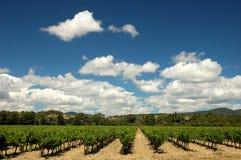 Landscape in Provence, France Stock Photo