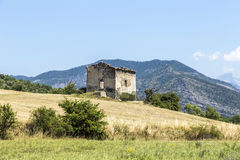 Landscape in the Provence with view to the Alps Royalty Free Stock Photo