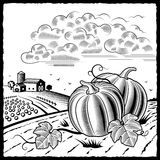 Landscape with pumpkins black and white. Retro landscape with pumpkins in woodcut style. Black and white vector illustration with clipping mask Royalty Free Stock Image