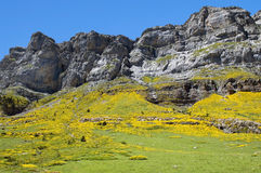 Landscape in Pyrenees, Spain Royalty Free Stock Photo