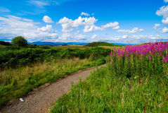 Landscape at Queens View in Scotland Stock Photos