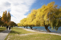 The Landscape of Queenstown of New Zealand. The old couple walking along the shore Royalty Free Stock Photos