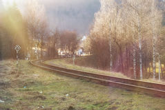 Landscape of railroad tracks Stock Image