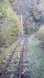 Landscape with railway in the forest Royalty Free Stock Photos