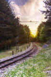 Landscape the railway soaring through the forest. In a beautiful sunset Royalty Free Stock Photography