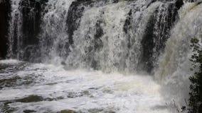 Haruru Falls. Landscape with Rainbow Falls , New Zealand stock video footage