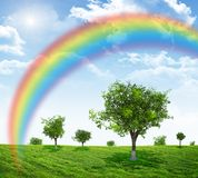 Landscape with rainbow Stock Image