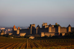 Landscape of rampart towers rising from vineyards Stock Photo