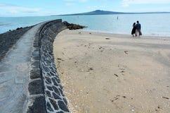 Landscape of Rangitoto Island Auckland New Zealand Royalty Free Stock Photos