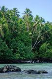 Landscape of Rapota Island in Aitutaki Lagoon Cook Islands Stock Image